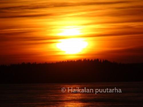 Eilen illalla nähtiin Etelä-Suomessa poikkeuksellisen hienoja revontulia. Niitä ei tullut ikuistettua, mutta laskevan auringon väritkin ovat huikean hienoja.