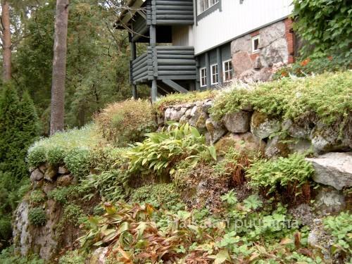 """""""Villa Ainola"""" sijaitsee metsäisellä kummulla, jossa osittain luonnotilainsen mäen tunnelma ja sammaleinen metsämaasto muistutti taiteilijoiden ihailemaa erämaamaisemaa."""
